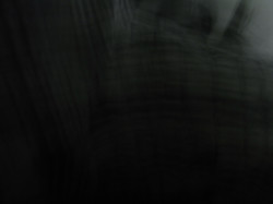 5 (2009)